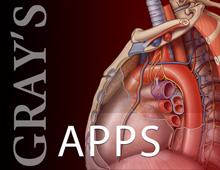 Gray's apps